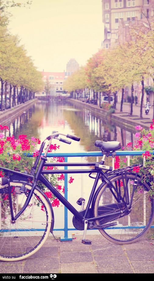 Bicicletta Vicino Al Canale Facciabucocom