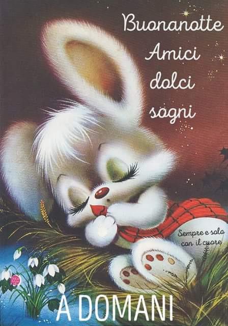 Buonanotte Chiacchiera Pubblicata Da Pierrot Facciabuco Com