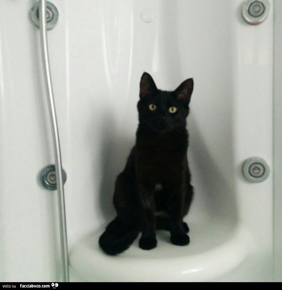 Tutti i meme su Il gatto con gli stivali - Facciabuco.com